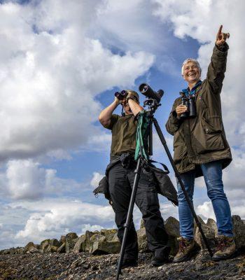 Rømø & Tønder - Find en guide